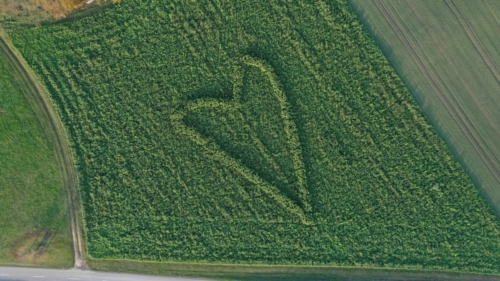 verliebter Landwirt